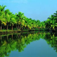 Hill & Wild Kerala Package with Backwaters & Beaches
