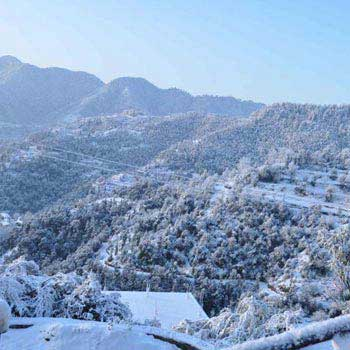 Family Special Shimla Tour Package