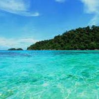 Andaman View Package