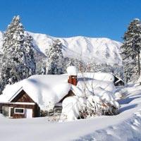Paradise Of Kashmir - Budget Tour