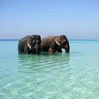 Andaman Beach Package