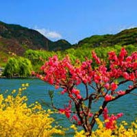 Kashmir 5Nights / 6Days Tour