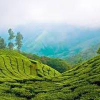 Kerala 3Nights / 4Days Tour
