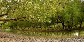Jharkhali(sundarban) Tour 2 Night/ 3 Days
