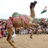 Rajasthan Imperial Tour- 6N - 7D