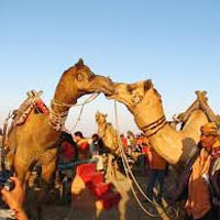 Kutch Rann Utsav- Festival Tour of Gujarat
