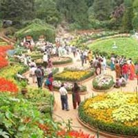 Bangalore Ooty Tour from Bangalore Package by Car - 4 days