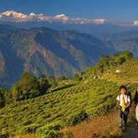 Comprehensive Sikkim and Darjeeling with Kalimpong(8 Nights) Tour