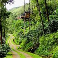 Coorg - 3 nights / 4 days Tour