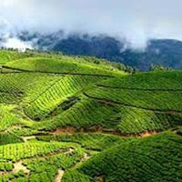 Bangalore – Mysore - Ooty – 4 Nights / 5 Days Tour