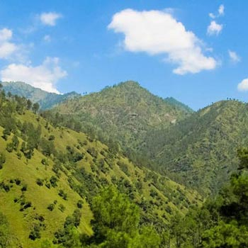 Shimla Romentic Packages