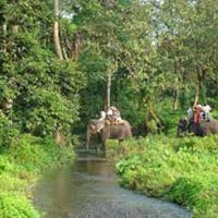 3N 4D Dooars Without Forest Stay Tour