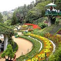 Mysore-ooty 3n4d Bus Package
