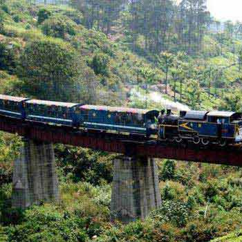 Bangalore-Ooty-Coonoor Package