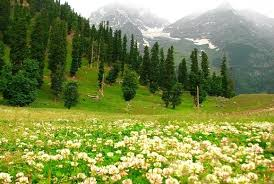 KASHMIR PACKAGE 5 Night 6 Days