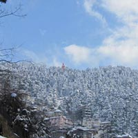 Shimla Amazing Tour Package