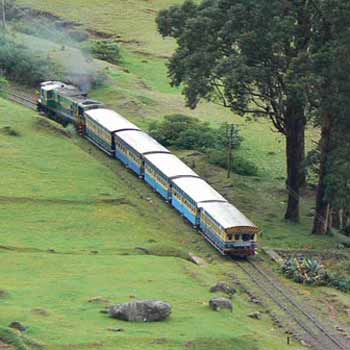 Bandipur and Ooty Tour