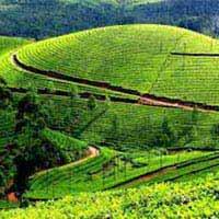 Darjeeling Kalimpong Gangtok Tour