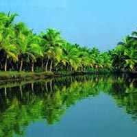 Romantic Kerala Tour Tour