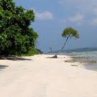 Amazing Andaman with Neil Island Tour