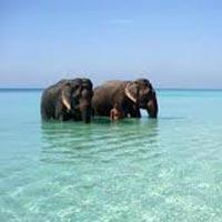 Andaman Panoramic Island Trip