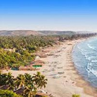 Best Of Goa Tour