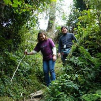 Trek to Darjeeling and Sikkim Hills Tour