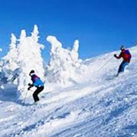 Exclusive Shimla Tour Package