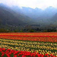 Srinagar Leh Tour Package (08 Nights / 10 Days)