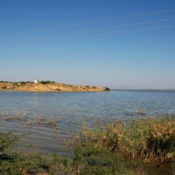 Gujarat Desert Beach Tour