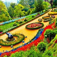 Ooty Package for 5 Days