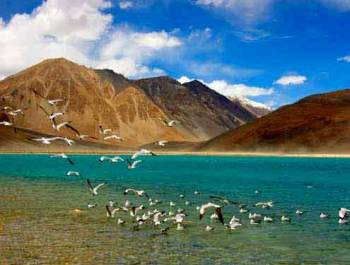 Srinagar – Ladakh – Manali Tour 10 Days June – October Month