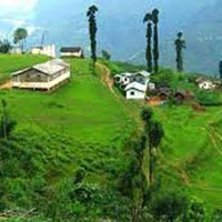 Darjeeling - Kalimpong - Gangtok - Lachung - Pelling Special Tour Package Tour