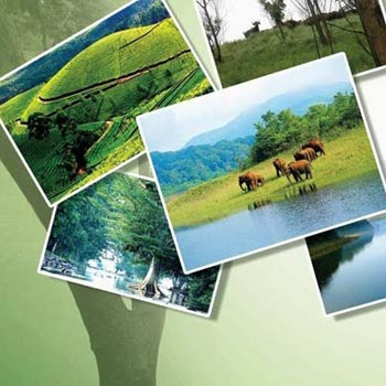 Best of Kerala Tour -7Nights/ 8Days