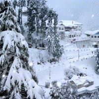 Himachal Tour From Delhi