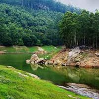 special Kerala Honeymoon Tour(Munnar, Thekkady, Alleppey)