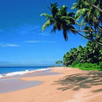 Amazing Goa Ganpatipule Package Tour