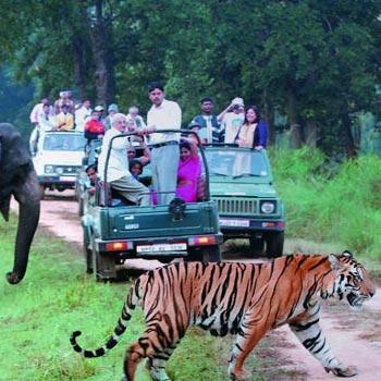 Adventurous Uttaranchal Tour