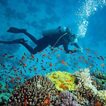 Ekokan Water Sports and Scuba Diving Tour