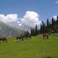Srinagar Tour Package (05 Night / 06 Days)