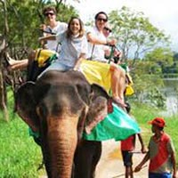 Kerala Family Holiday Package