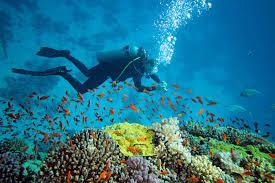Scuba Diving in Goa Trip Tour