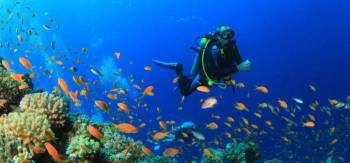 Combo of Scuba Diving and Watersports in Goa
