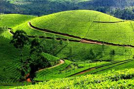 Kerala Tour From Goa