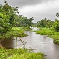 Assam with Kaziranga Tour