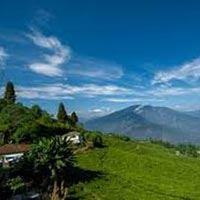 North East Delight with Pelling Tour