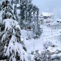 Shimla and Around Tour
