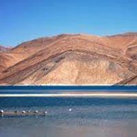 Glimpses of Ladakh
