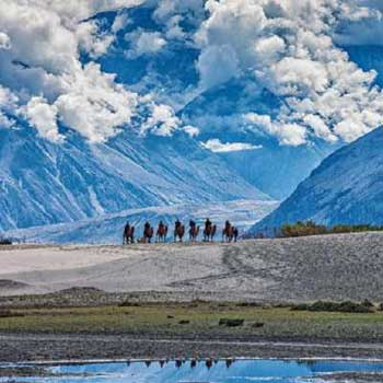 Travel To Ladakh Tour