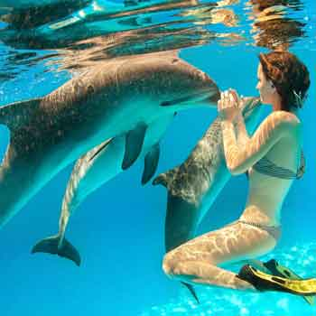 Dolphine Kiss at Maldives